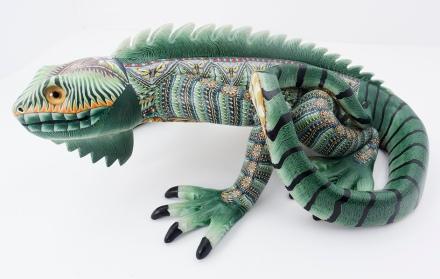 iguana-jonAnderson
